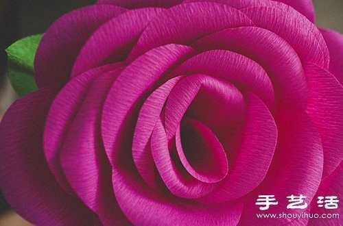 用皱纹纸做玫瑰花皱纹纸玫瑰花的折法图解答:所需材料:皱纹纸具体步骤