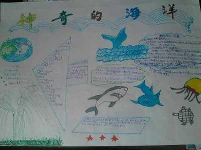 海底世界手抄报 神奇的海洋主题手抄报图片